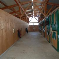 clinica equina san biagio galleria 03